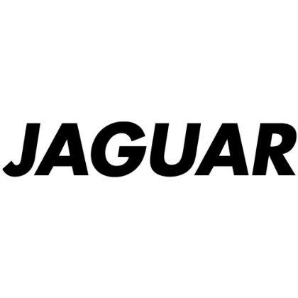 Afbeelding voor fabrikant Jaguar