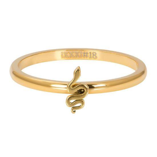 Afbeeldingen van iXXXi Symbol snake