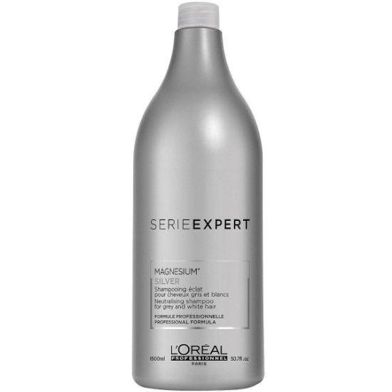 Afbeeldingen van L'Oréal SE Silver Shampoo